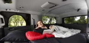 The Overnighter SUV Door Cover with Screen and Canopy